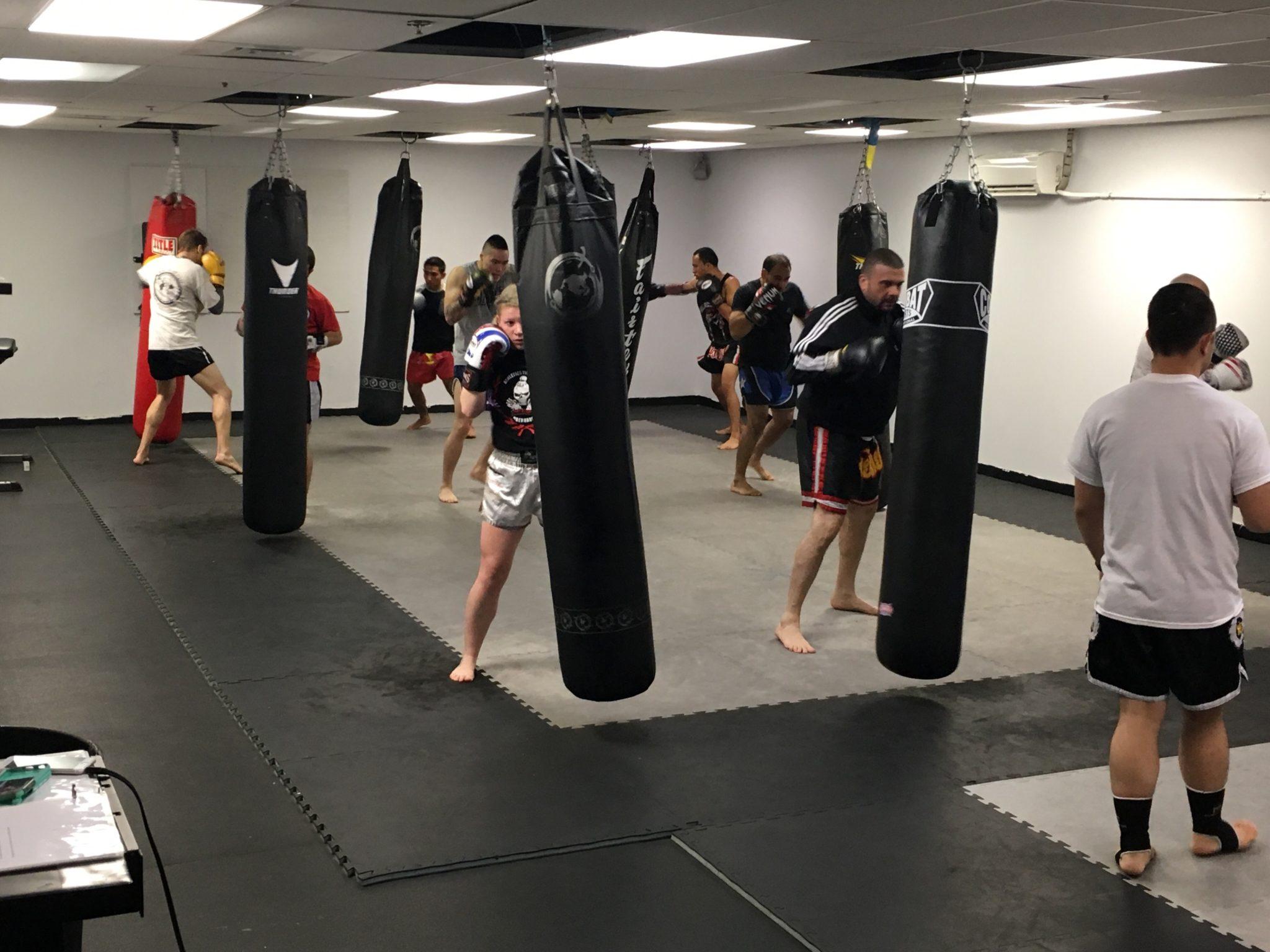 Algeo MMA muay thai